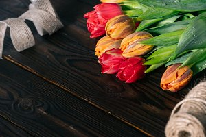close up view of bouquet of tulips,