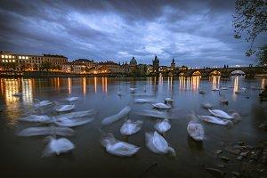 Night view on Vltava river