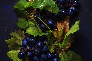 Blue grapes with green leaves, top v