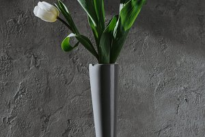 white spring tulips in grey vase on