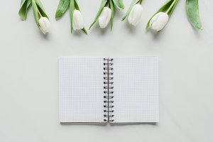 top view of notebook with white tuli