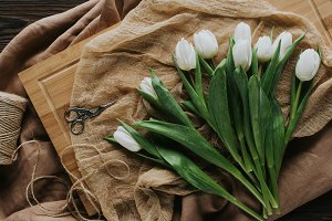 top view of white spring tulips on w
