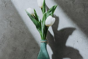 white tulip flowers in blue vase on