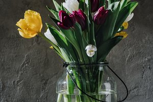 spring tulip flowers in glass jar on