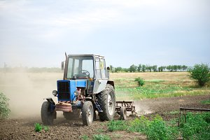 Tractor cultivator on the field