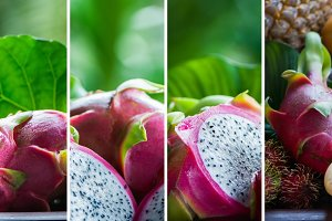 Dragon fruit in natural conditions