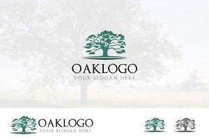 Big Oak Tree Ecology Nature Logo