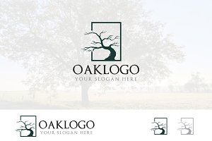 Dry Tree in Square Ecology Logo