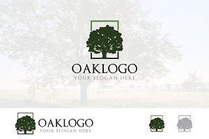 Green Oak Tree Square Ecology Logo