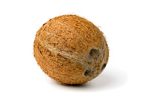 A ripe coconut on a white