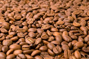 Coffee beans closeup.