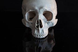 Human skull. Halloween.