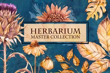 Herbarium Master Collection
