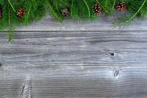 real Christmas fir tips on aged wood