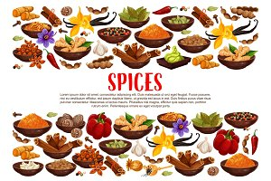 Spices and condiments cooking