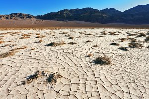 The cracked ground in desert