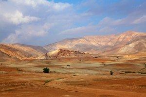 The desert Sinai in December