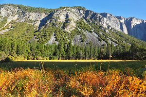 Early autumn in national park.