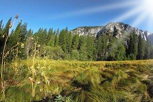 Picturesque site in Yosemite nationa