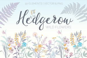 Hedgerow Wild Flower Bundle