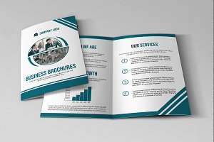 Bifold Business Brochure V811