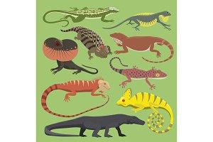 Reptyle vector lizard reptile