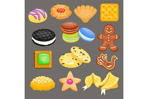 Sweet cookie vector cakes tasty