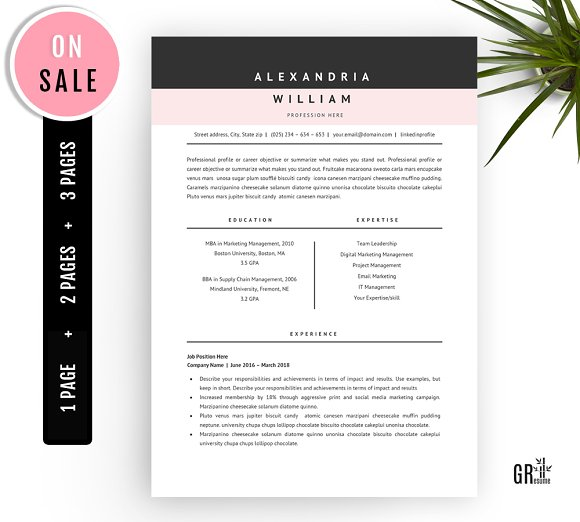 professional resume template word resume templates creative market