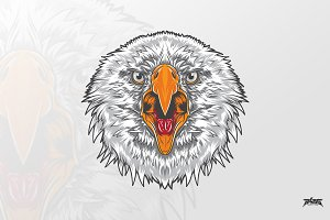 Fierce Eagle Head Vector