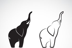 Vector of elephant design.