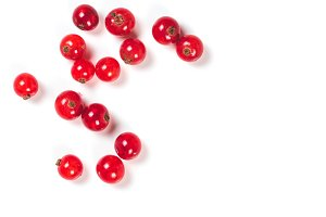 red currant isolated, copy space