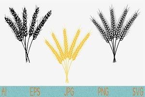 wheat spikelets ear set vector svg