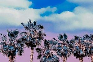 Purple Tropical Beach dreams. Palm.