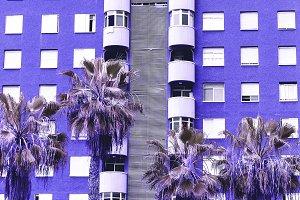 Tropical Palm location. Travel. Cana