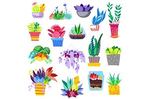 Plants in flowerpots vector potted