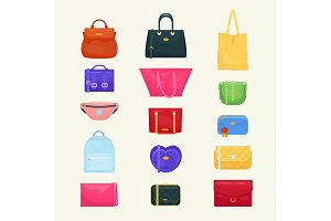 Woman bag vector girls handbag or
