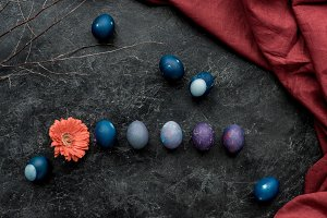Gerbera and colored eggs on dark bac