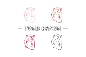 Human heart anatomy icons set