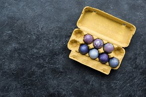 Purple colored eggs in carton on dar