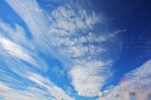 The  blue sky above Yellowstone nati