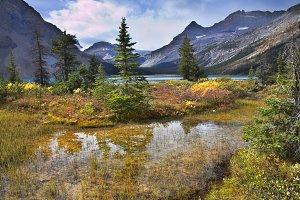 Turquoise lake and orange grass.