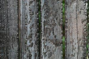 Burned wooden fence