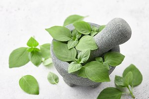 Fresh green basil leaves in mortar