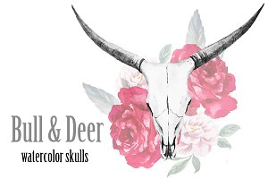 Watercolor bull and deer skulls +PNG