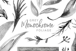Grey Monochrome Foliage