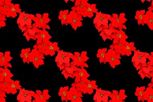 Red Flowers Seamless Pattern Design
