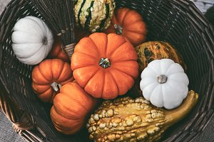 Colorful Pumpkins In A Basket