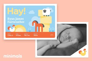 Hay! Baby Announcement Template