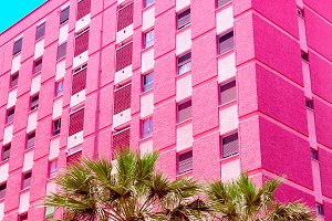 Pink Hotel.  Pink tropical mood. Arc