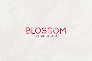 Blossom Sans Serif Font